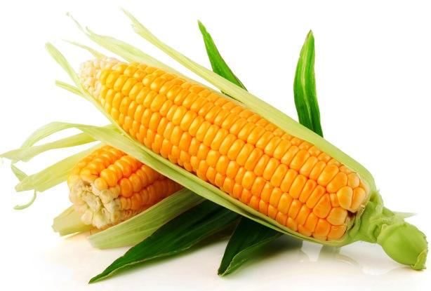 escapada gastronomica homenaje a la harina y el maiz de llanes en asador riegu