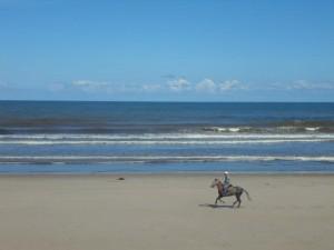 playa-Sta-Marina-2-300x225 Caballos en la playa de Ribadesella