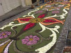 Alfombras florales en Cue