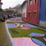 alfombras-florales-cue2