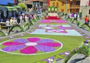 alfombras florales cue3