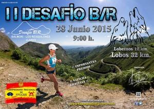 cartel-2015--300x212 Carrera pedrestre Desafío BR Balmori Los Resquilones
