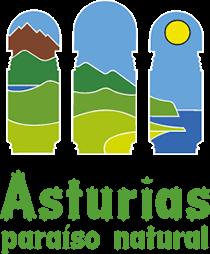 LINK A www.turismoasturias.es