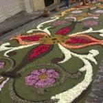 alfombras-florales-cue