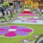 alfombras-florales-cue3